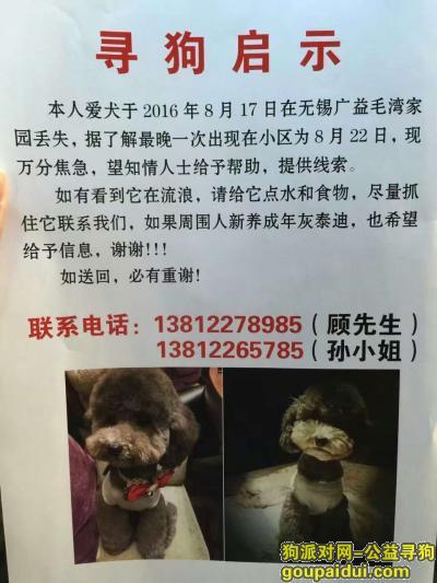寻狗启示,求大家帮忙  无锡广益附近丢失,它是一只非常可爱的宠物狗狗,希望它早日回家,不要变成流浪狗。