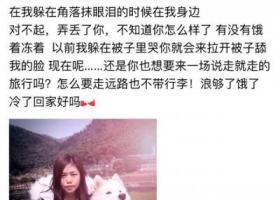 宁波九龙湖风景区走失爱犬萨摩