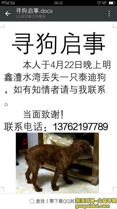 张家界找狗,4月22晚上8点在明鑫澧水湾丢失一只贵宾犬,它是一只非常可爱的宠物狗狗,希望它早日回家,不要变成流浪狗。