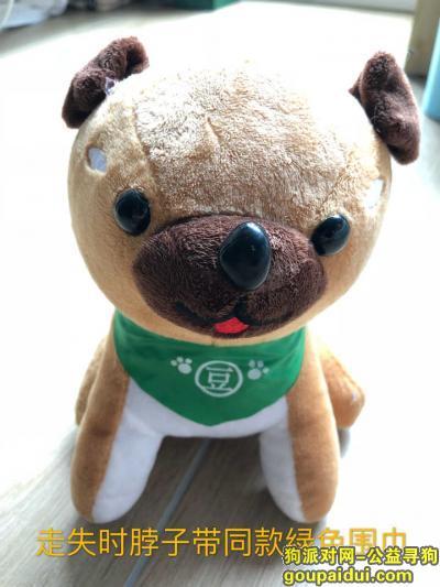 寻狗启示,香槟色泰迪,脖子带绿色围巾,它是一只非常可爱的宠物狗狗,希望它早日回家,不要变成流浪狗。