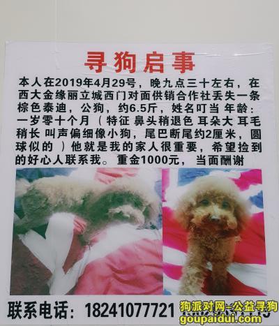 铁岭寻狗启示,好心人帮忙留意一下 酬金1000 它是我的家人很重要 叮当 该回家了,它是一只非常可爱的宠物狗狗,希望它早日回家,不要变成流浪狗。