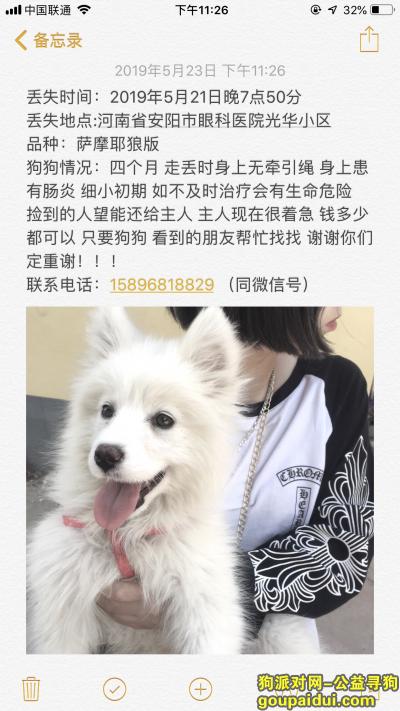 安阳找狗,在2019年5月21日晚7点50分河南省安阳市眼科医院光华小区丢失,它是一只非常可爱的宠物狗狗,希望它早日回家,不要变成流浪狗。
