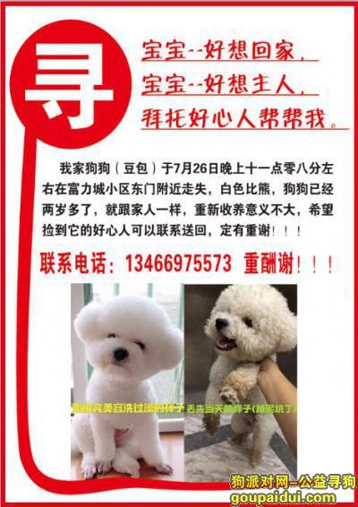 运城寻狗网,比熊犬 山西省运城市新绛县富力城小区26号晚上十点左右丢失,它是一只非常可爱的宠物狗狗,希望它早日回家,不要变成流浪狗。