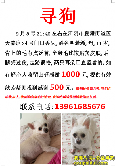 无锡寻狗启示,无锡江阴市夏港街道蓝天豪庭24号寻找11岁爱犬,它是一只非常可爱的宠物狗狗,希望它早日回家,不要变成流浪狗。