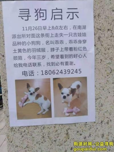 武汉寻狗启示,寻爱狗,一只吉娃娃品种的小狗,名叫乖乖,它是一只非常可爱的宠物狗狗,希望它早日回家,不要变成流浪狗。
